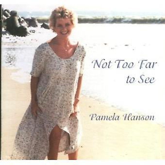 Pamela Hanson - Not Too Far to See [CD] USA import