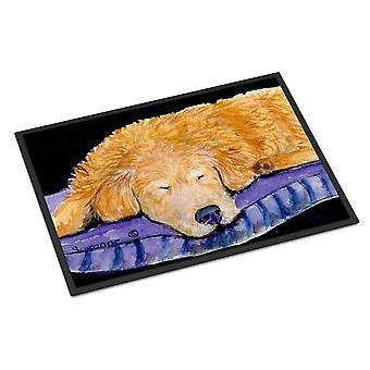 Carolines Treasures  SS8909MAT Golden Retriever Indoor Outdoor Mat 18x27 Doormat