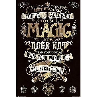 Harry Potter Poster magie