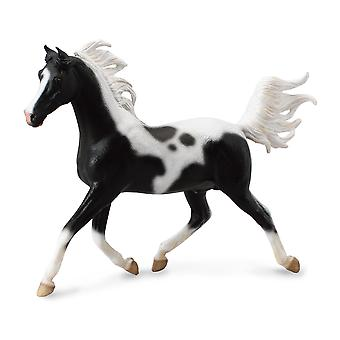 CollectA 1: 12 Half Arabian Stallion ? Pinto