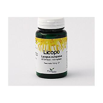 Lycopus 60 capsules of 150mg