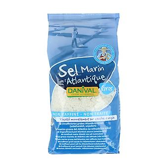 粗大西洋盐 1 公斤