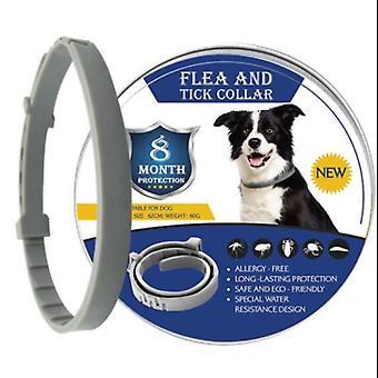 Bayer Seresto Flea & Tick Collar de prevención para gatos