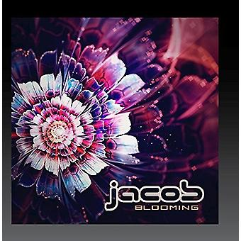 Various Artist - Blooming [CD] USA import