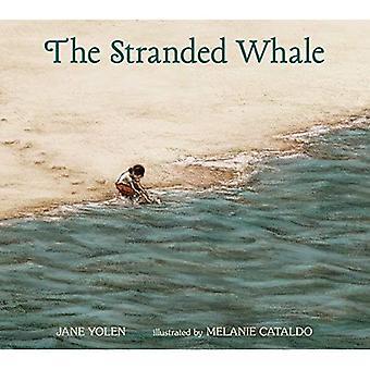 Die gestrandeten Wal