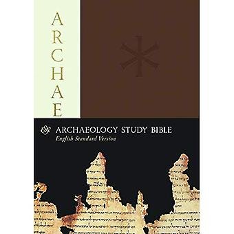 ESV-Archäologie Studienbibel