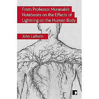 From Professor Murasaki's Notebooks on the Effects of Lightning on the Human Body