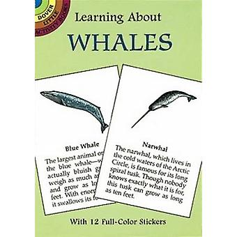 Learning About Whales by Sy Barlowe - 9780486297873 Book