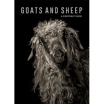 Goats and Sheep. A Portrait Farm by Kevin Horan