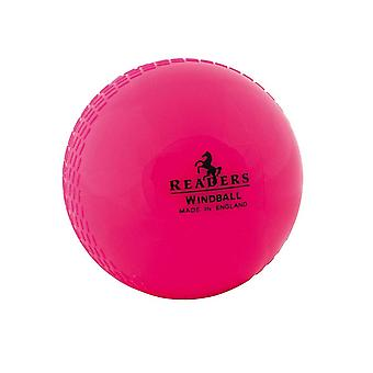 Leser Windball Training Coaching Cricket Ball Pink