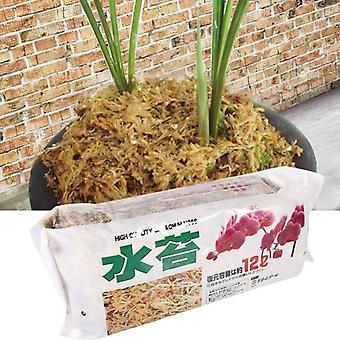 Mousse de sphaigne d'engrais organique pour la fleur de Sphagnum de Sphagnum d'orchidée