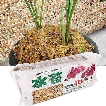 Organic Fertilizer Sphagnum Moss For Orchid Musgo Sphagnum Phalaenopsis Flower