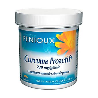 Turmeric Proactif 90 capsules