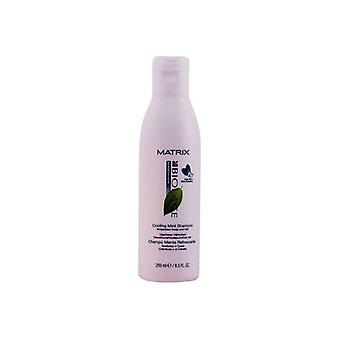 Schampo balsam Biolage Scalptherapie Matrix (250 ml)