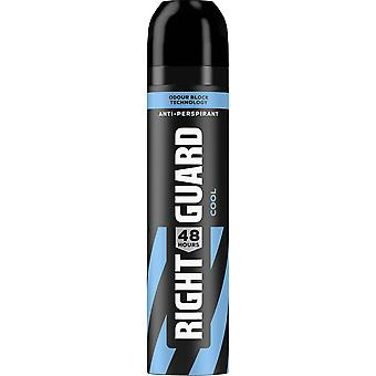 Right Guard 6 X Right Guard Total Defence Deodorant Aerosol For Men - Cool