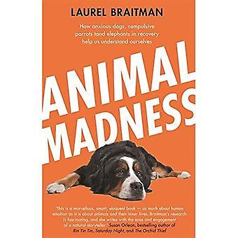 Eläinten Madness