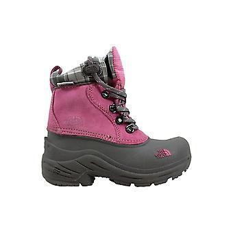 North Face Chilkats blonder Pink/grå førskole AX0ZRB2 størrelse 12 Medium