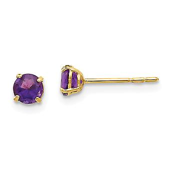 14k Yellow Gold Polished Round Amethyst 4mm Post Earrings Jewelry Gifts for Women