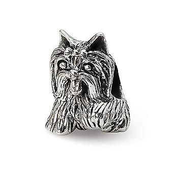 925 Sterling Silver Polerad finish Reflektioner Yorkshire Terrier Bead Charm Hängande Halsband Smycken Gåvor för kvinnor