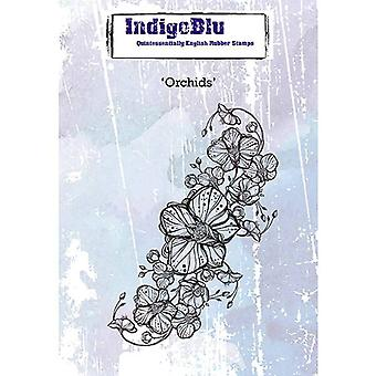 IndigoBlu Orkidéer A6
