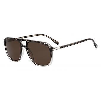 Solglasögon Mäns 1042/Saci/SP Män polariserade Brun