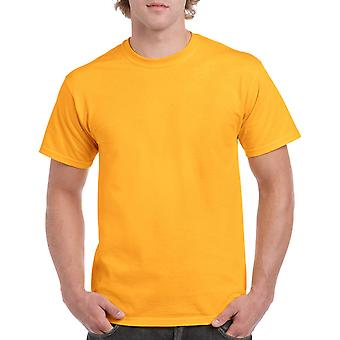 Gildan G5000 Plain Heavy Cotton T Shirt in Gold