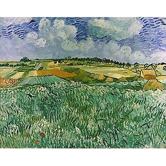 Ebene in der Nähe von Auvers Poster Print von Vincent Van Gogh