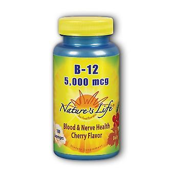 Nature's Life Vitamin B-12, 1000 mcg, Cherry 100 lozenges