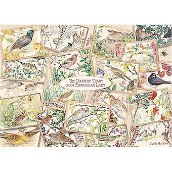 Falcon Deluxe The Country Diary Postkarten Puzzle (1000 Teile)