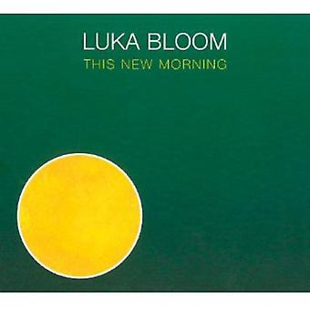 Luka Bloom - importação EUA This New Morning [CD]