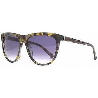 Ranskan yhteys Premium D runko aurinko lasit-Musta/ruskea