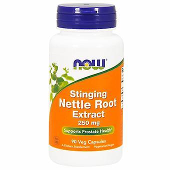 Now Foods Stinging Extrait de racine d'ortie 250 mg, 90 Capsules de légumes
