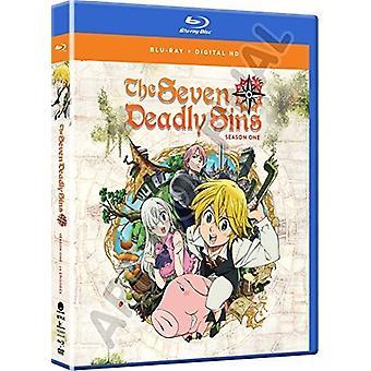 Seven Deadly Sins: Season One [Blu-ray] USA import