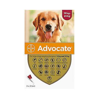 倡导犬 10-25 公斤 (22-55 磅) - 3 包