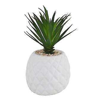 Succulent In Pineapple Shaped Pot