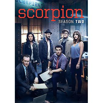 Scorpion: Säsong två [DVD] USA import