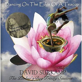 David Surkamp - Dancing on the Edge of a Teacup: The Pavlov's Dog [CD] USA import