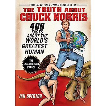 Truth About Chuck Norris, The