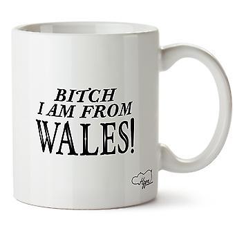 Hippowarehouse Bitch I Am From Wales Printed Mug Cup Ceramic 10oz