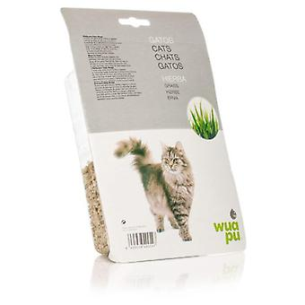 Wuapu Cat Grass (Cats , Cat Nip, Malt & More)