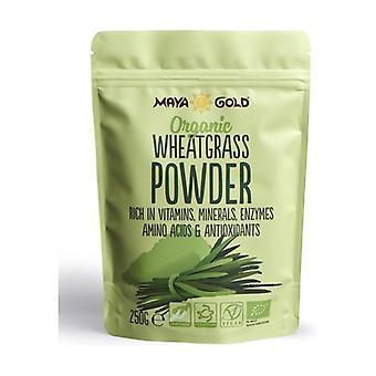 Grama de trigo orgânico 250 g de pó