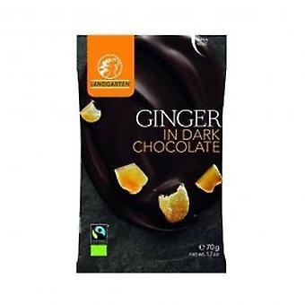 Landgarten - Ginger in Dark Chocolate 70g (10 pack)