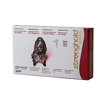 Stronghold Red Dogs 10-20kg (22-44lbs)-3 kpl