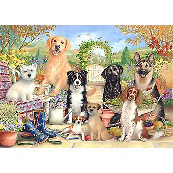 Otter House Waiting For Walkies Jigsaw Puzzle (500 Pieces)