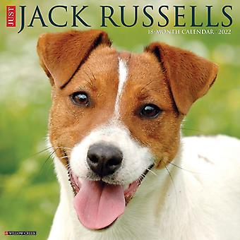 Just Jack Russells 2022 Wall Calendar Dog Breeds by Willow Creek Press