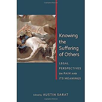 Att veta andras lidande: rättsliga perspektiv på smärta och dess betydelser