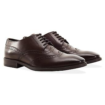 Mens brown double wing tip shoe