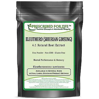 Eleuthero-4:1 extrato de pó de raiz natural (Eleutherococcus senticosus)