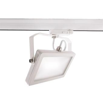 LED 3-fazowy reflektor szyny Flood SMD 15W 4000K 100 ° biały