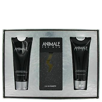 Cadeau animal set par animal 447204